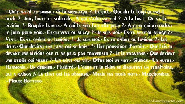 Pierre Bottero Quotes