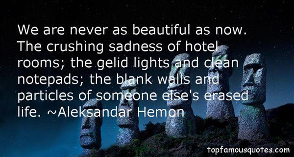 Aleksandar Hemon Quotes