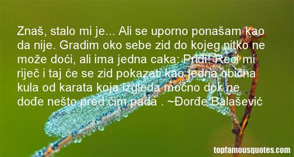 Ðorde Balaševic Quotes