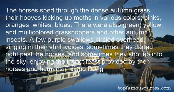 Jiang Rong Quotes