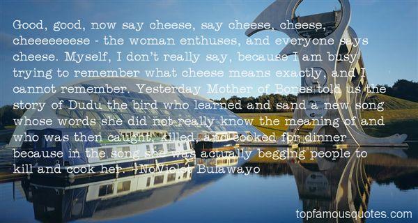 NoViolet Bulawayo Quotes