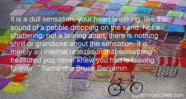Samantha Bruce Benjamin Quotes