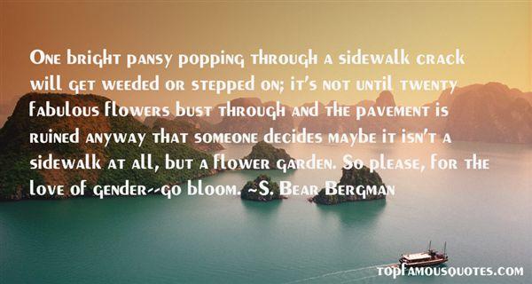 S. Bear Bergman Quotes
