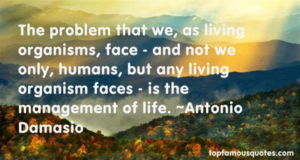 Antonio Damasio Quotes