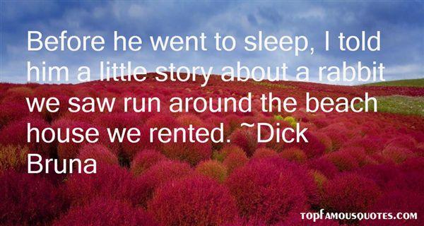 Dick Bruna Quotes