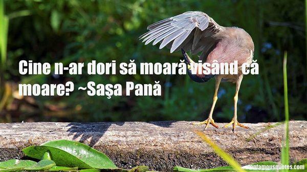 Saşa Pană Quotes