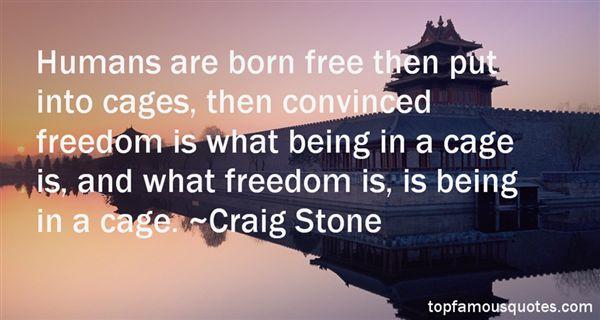 Craig Stone Quotes