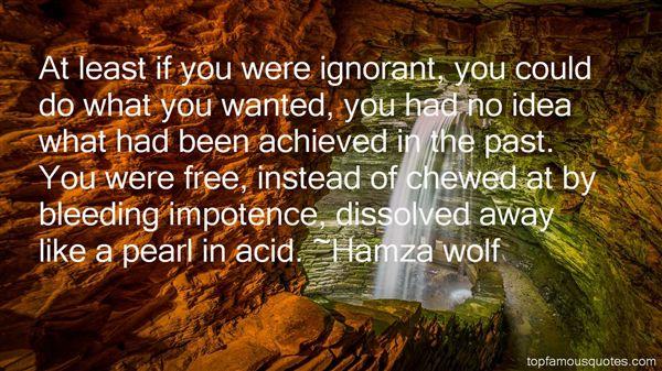 Hamza Wolf Quotes
