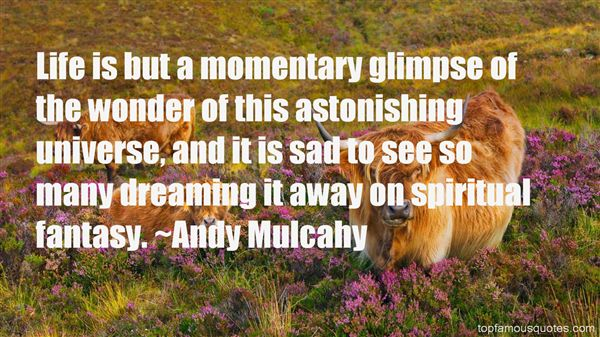 Andy Mulcahy Quotes