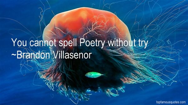 Brandon Villasenor Quotes