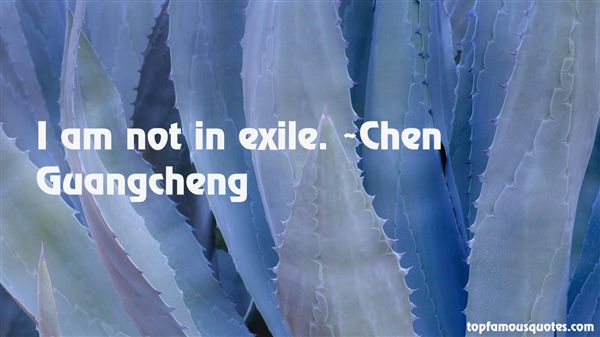 Chen Guangcheng Quotes