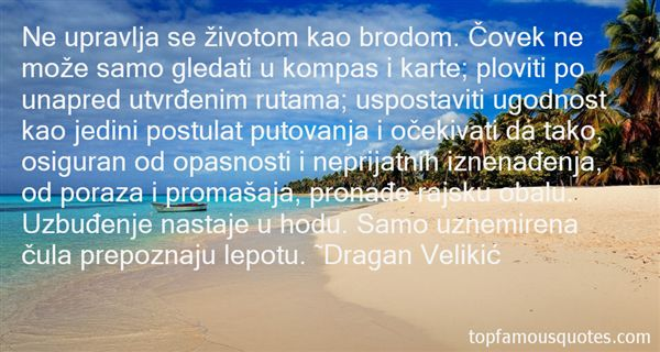 Dragan Velikic Quotes