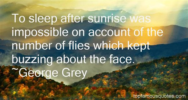 George Grey Quotes