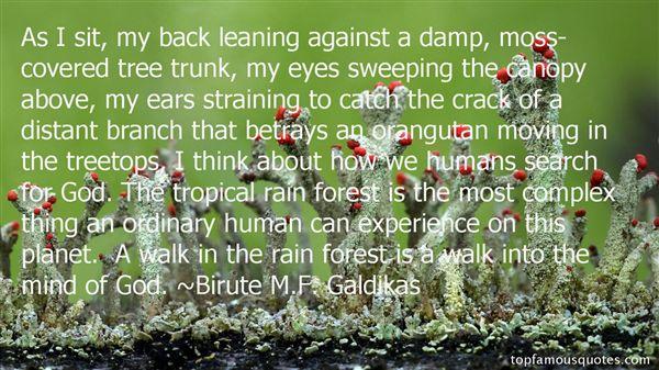 Birute M.F. Galdikas Quotes