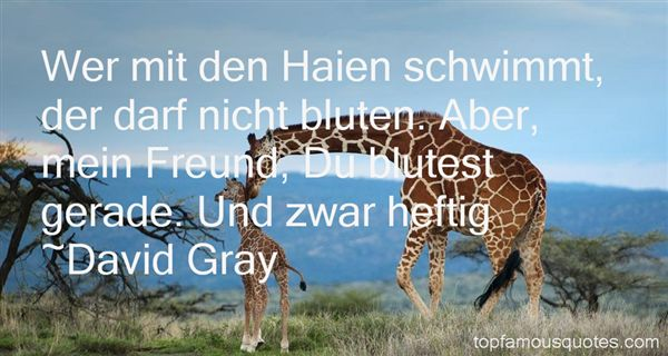 David Gray Quotes