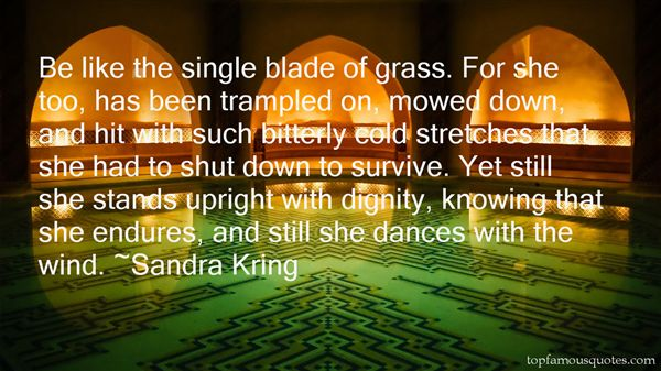 Sandra Kring Quotes