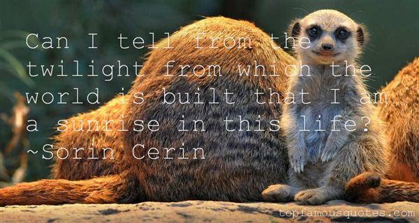 Sorin Cerin Quotes