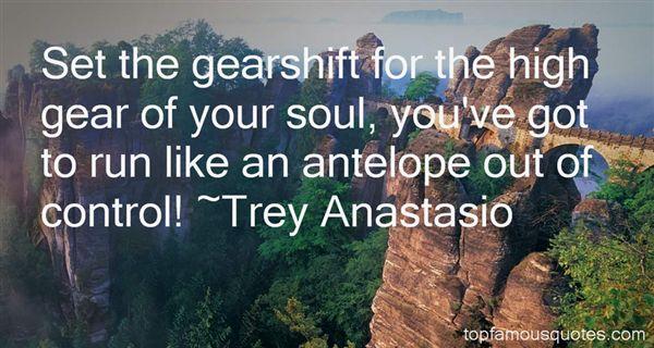 Trey Anastasio Quotes