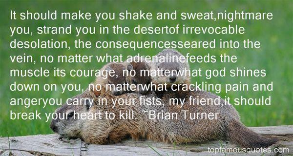 Brian Turner Quotes