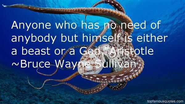 Bruce Wayne Sullivan Quotes