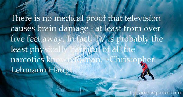 Christopher Lehmann Haupt Quotes