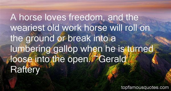 Gerald Raftery Quotes