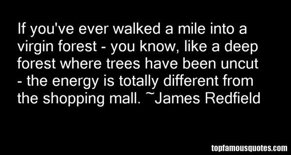 James Redfield Quotes
