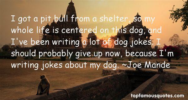 Joe Mande Quotes