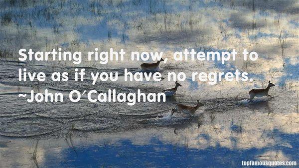 John O'Callaghan Quotes