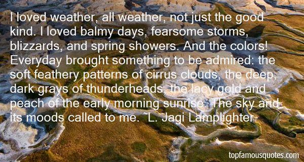 L. Jagi Lamplighter Quotes