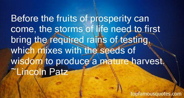 Lincoln Patz Quotes