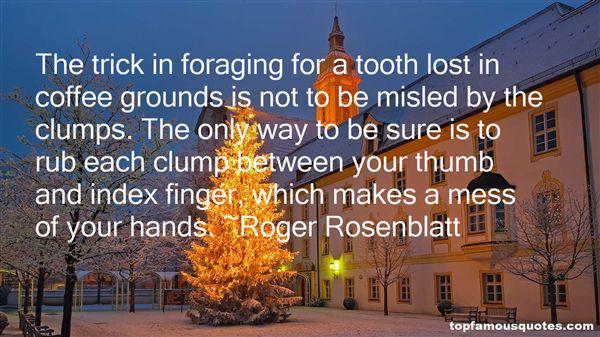 Roger Rosenblatt Quotes
