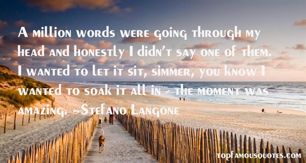 Stefano Langone Quotes
