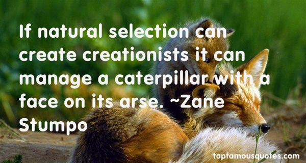 Zane Stumpo Quotes