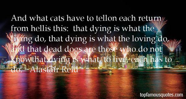 Alastair Reid Quotes