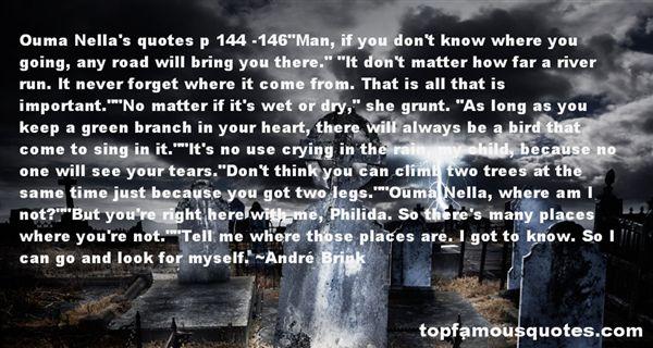 André Brink Quotes