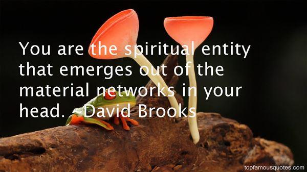 David Brooks Quotes