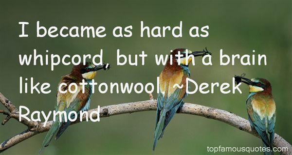 Derek Raymond Quotes