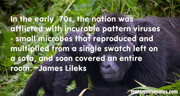 James Lileks Quotes