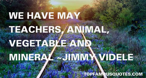 Jimmy Videle Quotes