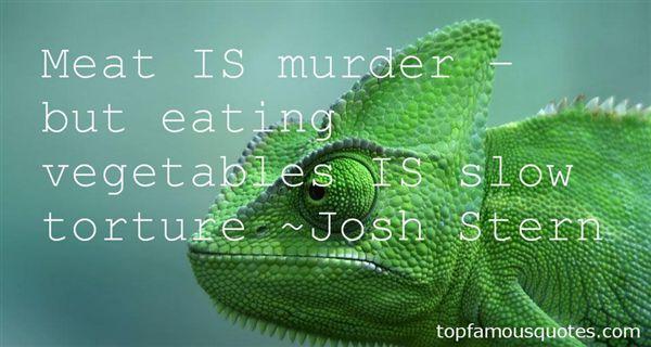 Josh Stern Quotes