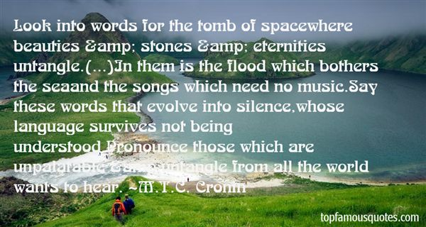 M.T.C. Cronin Quotes