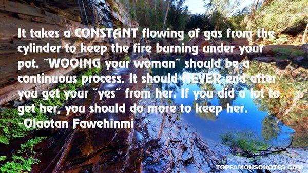 Olaotan Fawehinmi Quotes