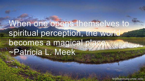 Patricia L. Meek Quotes