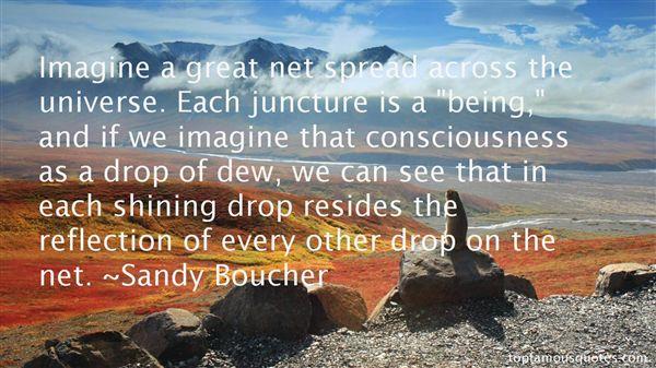Sandy Boucher Quotes
