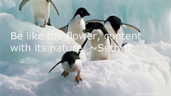 Seth D. Quotes