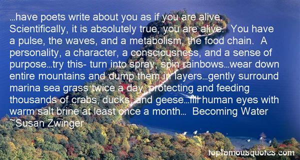 Susan Zwinger Quotes