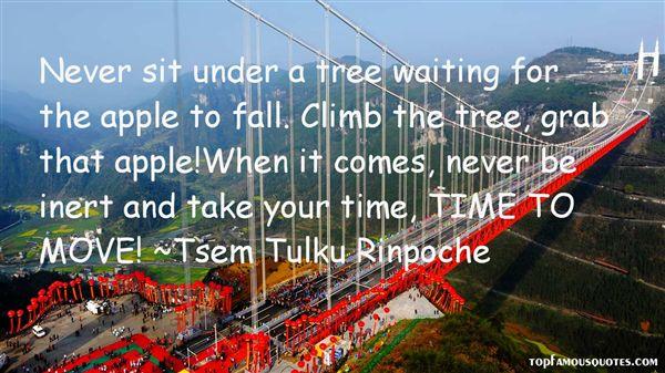 Tsem Tulku Rinpoche Quotes