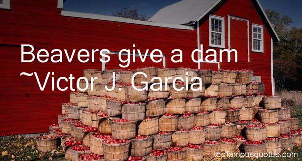 Victor J. Garcia Quotes