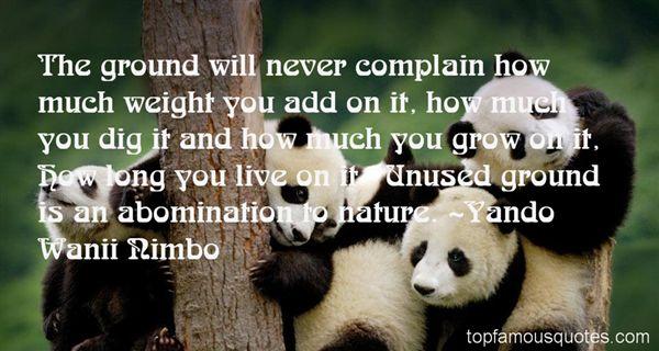 Yando Wanii Nimbo Quotes